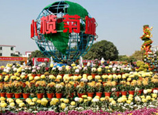 Chrysanthemum Show in Xiaolan